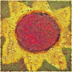 NSN-Sunflower-Artwork